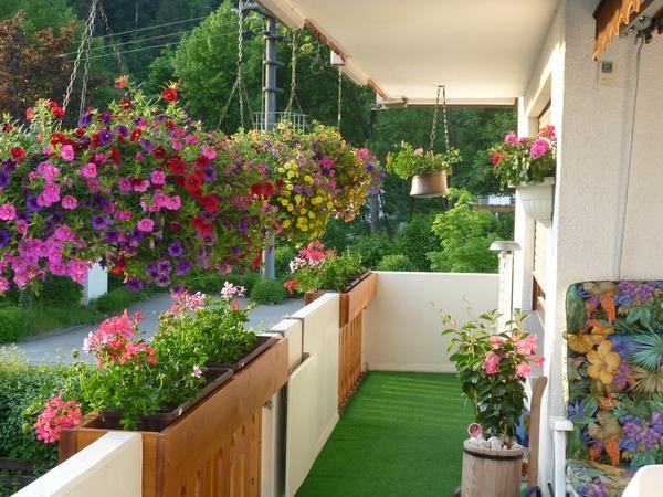 r ckblick 2013 wer hat den sch nsten balkon balkon badische zeitung. Black Bedroom Furniture Sets. Home Design Ideas