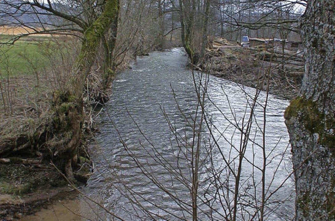300 Meter der  Kleinen Wiese sollen renaturiert werden.   | Foto: A. Hönig