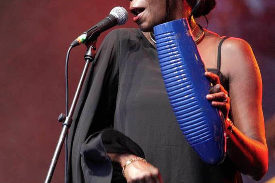 Sommer, Sonne, Salsa: Impressionen vom ersten Tag des African Music Festivals (Foto: Patrik Müller)