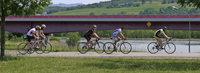 Das Elsass mit dem Fahrrad entdecken