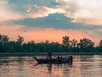 Beiß endlich - wie Angler den großen Wels im Rhein jagen