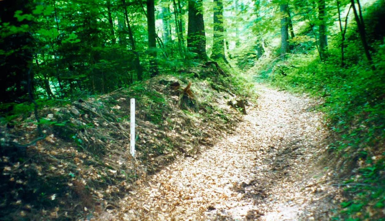 Vorher:  Der als Teil eines Schanzen-E... Raitbach  mit dem historischen Wall.   | Foto: Privat