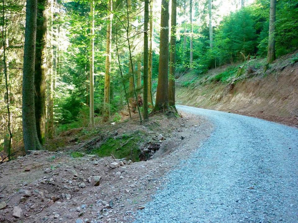 Nachher: Der Weg nach der Verbreiterun...ist buchstäblich platt gemacht worden.  | Foto: Werner Störk