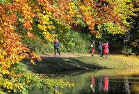 Fotos: Herbstliches Farbenspektakel in Deutschland
