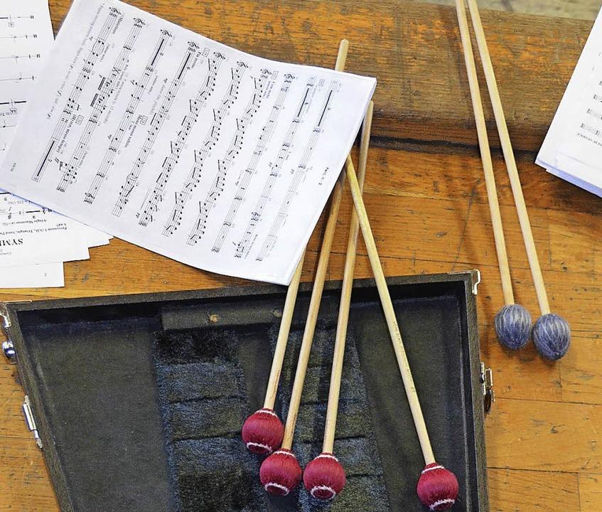 """Orchester des Vereins """"Benefiz  Musik und Kultur für andere""""    Foto: Sylvia-Karina Jahn"""