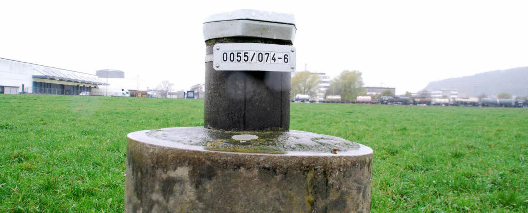 In kaum einer anderen Kommune Deutschl...– im Hintergrund die Firma DSM.   | Foto: Ralf Staub