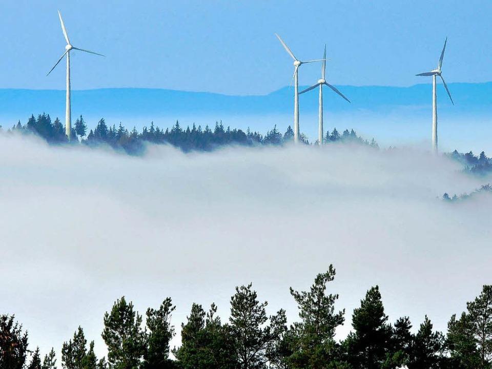 Wird die Geschwindigkeit, mit der der ...n treibt, im Schwarzwald überschätzt?   | Foto: dpa