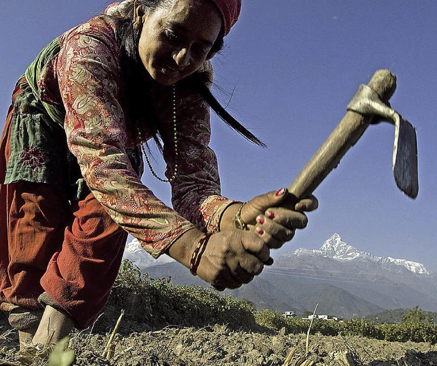 Eine Nepalesin bei der Feldarbeit  | Foto: dpa Deutsche Presse-Agentur