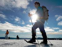 Tauwetter setzt Pisten zu – �ber 1200 Meter geht Skifahren noch