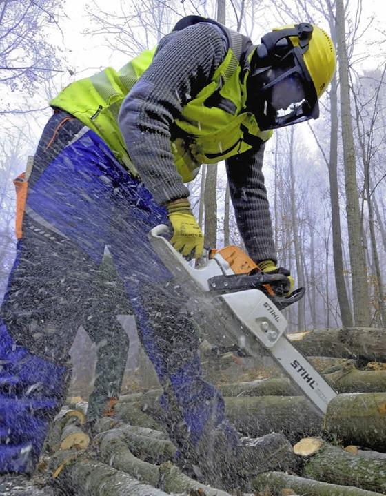 Wer sein Holz selbst im Wald holt, muss einen Motorsägenschein vorweisen.    Foto: BZ