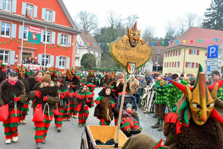 Impressionen vom Narrentreffen in Malterdingen. (Foto: Dieter Erggelet)