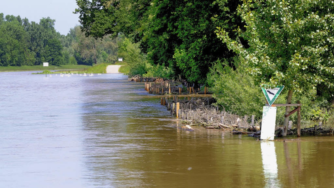 Beim kleinsten Hochwasser des Leopolds...s strömen die Fluten in den Rheinwald.  | Foto: Siegfried Gollrad