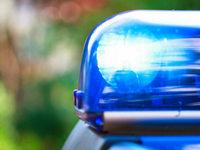 Raser, Diebe, Hexerei und Pferde: Viel Arbeit f�r die Polizei
