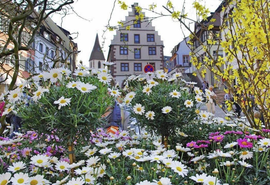 Blühendes Endingen mit geschmückten Br... und den Kaiserstühler Naturheiltagen.  | Foto: G&H