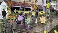 Bunte Frühlingsboten im Elsass