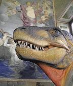 Naturhistorisches Museum in Basel: Der Blick des Homo Sapiens