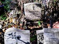 Wie Eltern den Tod ihres Kindes verarbeiten k�nnen