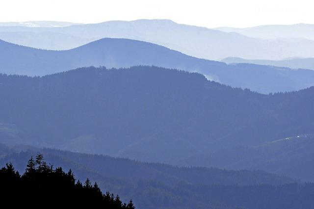 Schwarzwald, Wunder-Wald