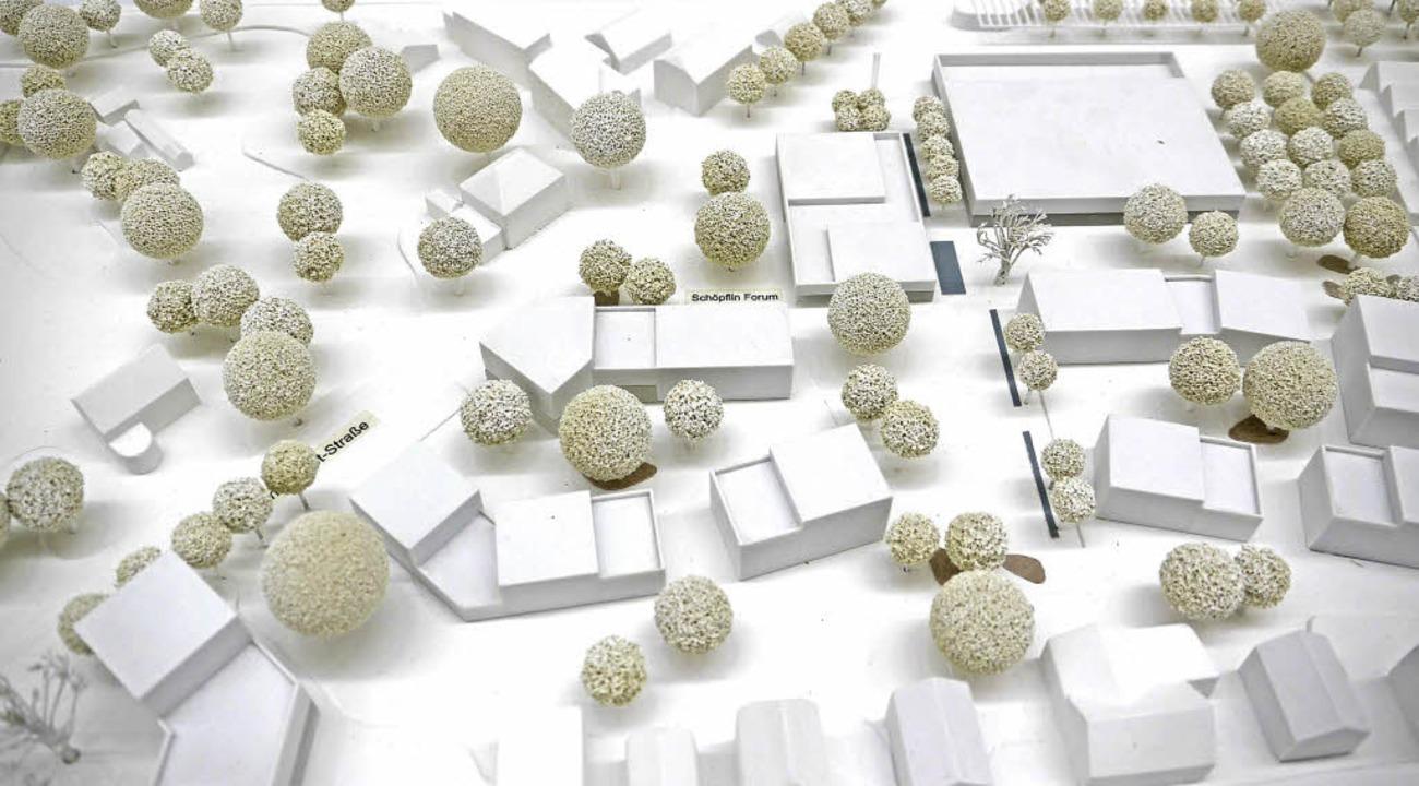 Das neue Quartier im Modell mit der Sp...äsidentin Sophie Wolfrum (von links).     Foto: Willi Adam
