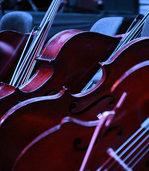 Das SWR Sinfonieorchester erleben
