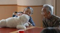Japan sieht Pflegeroboter als Massenmarkt