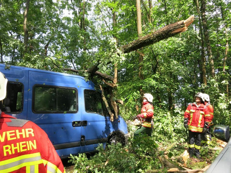 Der vom Baum eingedrückte Bus, in den ...inder vor dem Sturm geflüchtet hatten.  | Foto: UTKE