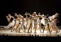 Das B�jart Ballet Lausanne kommt nach Basel