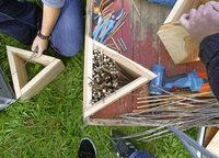 """BUND-Programms """"Stadtwildnis"""": Kinderstube für Wildbienen bauen"""
