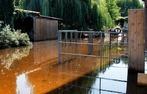 Fotos: Dorotheenhof bei Allmannsweier überschwemmt
