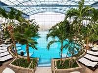 Fotos: Das Badeparadies in Titisee ohne Menschen