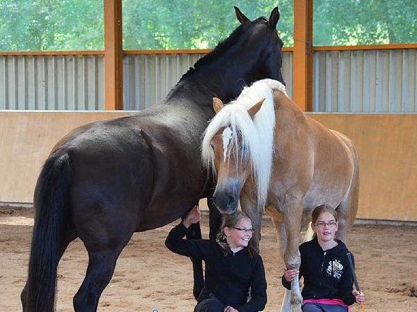 Die Welt der Pferde war zu Gast auf dem Bellihof in Ebnet.
