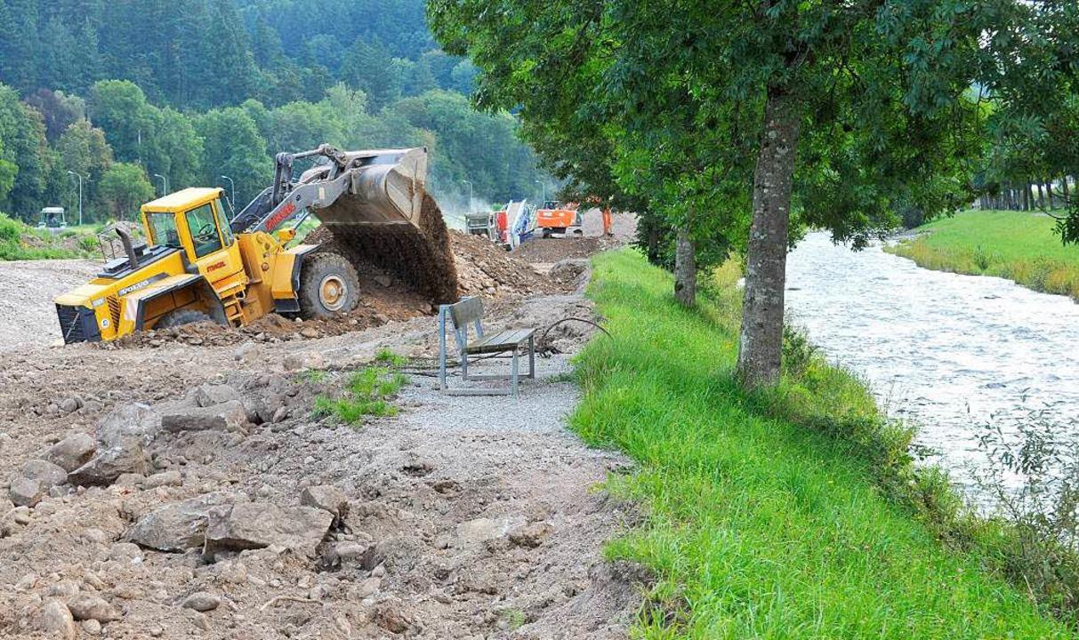 Nicht mehr nur geradeaus, sondern mäan...o auch mögliches Hochwasser aufnehmen.  | Foto: michael Bamberger
