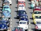 Das gro�e Krabbeln der VW-K�fer