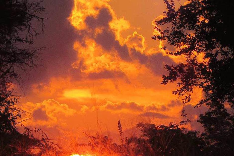 Sonnenuntergang am Kwando-Fluss in Namibia (Foto: Jürgen Ernst)