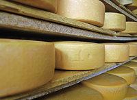 Subventionen für Butterberge