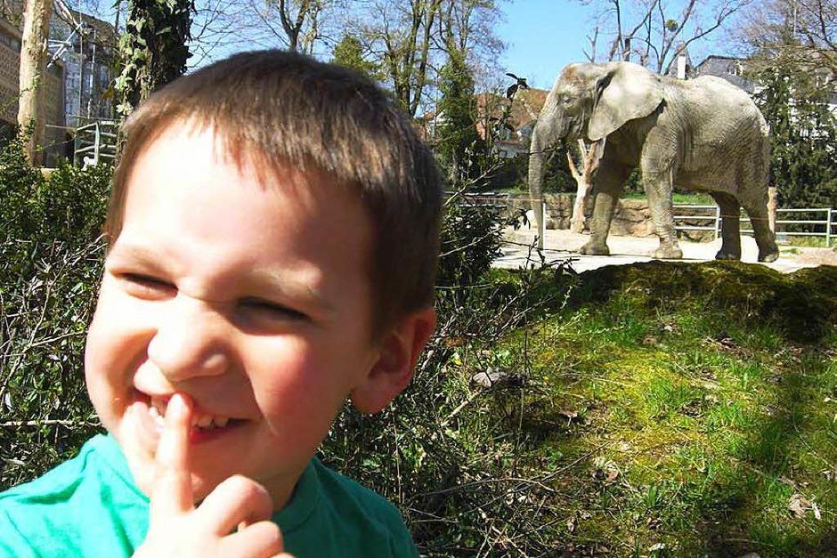 Im Zoo Basel (Foto: Anke Albrecht)