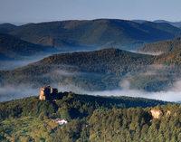 Wandern in den Nordvogesen: Wälder, Wiesen, Weltenbummler