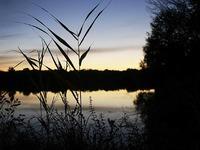 Sex, Angeln und Ignoranz: Stress am Nimburger Baggersee
