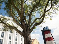 Europa-Park: Der Herr �ber 400 Baumarten