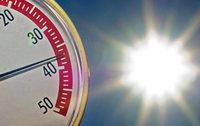 Dem Klimawandel die Stirn bieten
