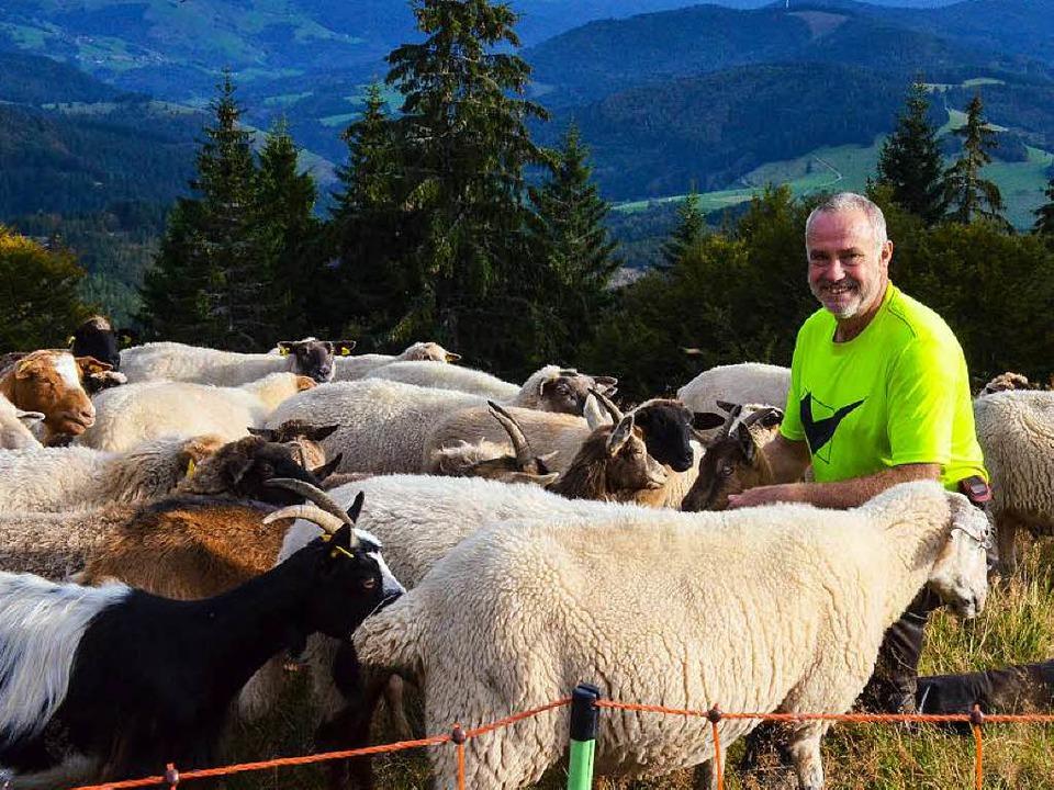 Arbeitsplatz Hochschwarzwald: Jürgen Weltle mit seinen Schafen und Ziegen    Foto: Gabriele Hennicke