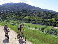 Mountainbiken durch den Schwarzwald