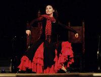 Fiesta Flamenca im Bürgerhaus Seepark