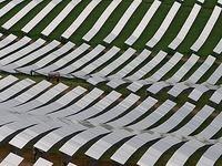 Zukunft ungewiss: Die Riesen-Solarfabrik wackelt