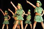 Fotos: Tanz-Musical im Forum Merzhausen zugunsten der Staufen-Stiftung