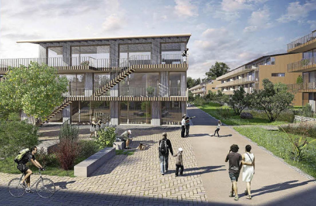 So soll Dischs Solarsiedlung am Hornac...her Lebensraum wird groß geschrieben.   | Foto: Visualisierung: Stiftung Abendrot / Architron