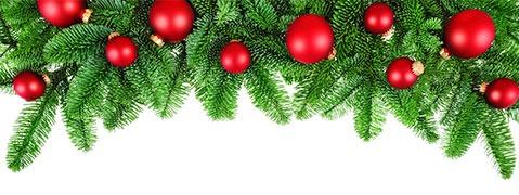 Landratsamt verbietet Weihnachtsb�ume an Schulen