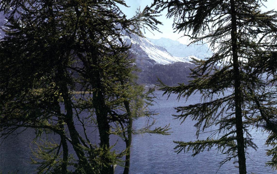 Wo sich Wasser und Berg vermählen:  der Silser See, von der Halbinsel Chasté     Foto: a.t.schaefer