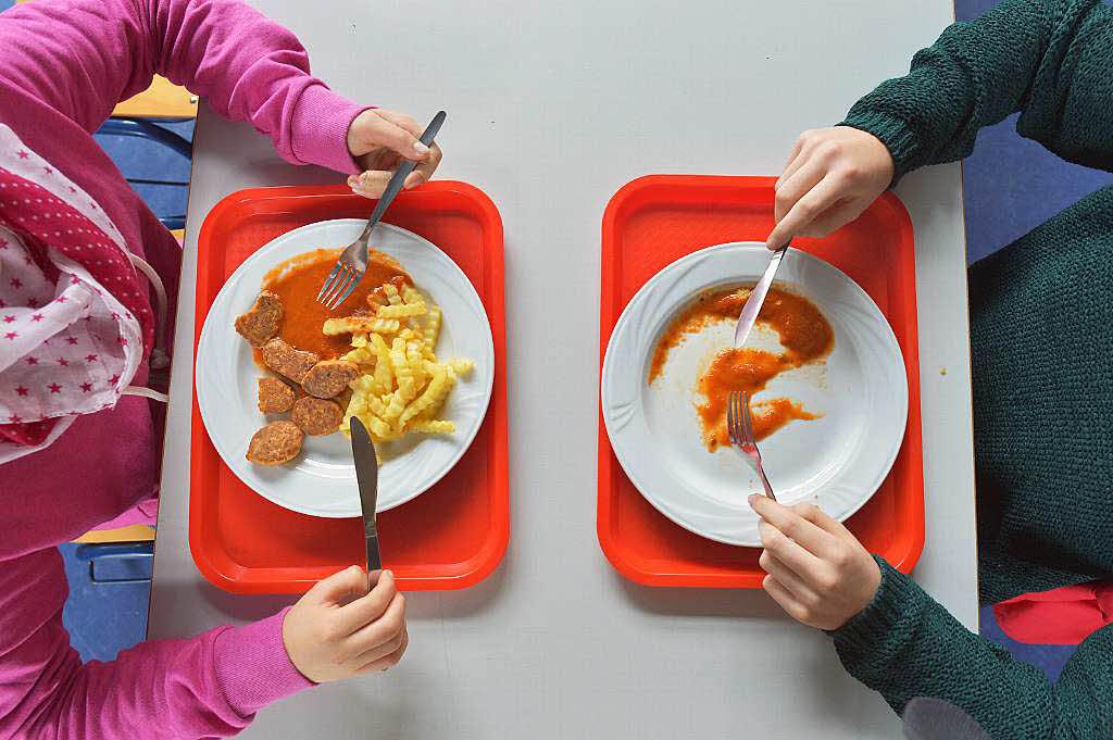 deutsches schulessen ist fleischlastig und zu ungesund. Black Bedroom Furniture Sets. Home Design Ideas