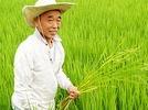 Trend: Reis aus der Gro�stadt Hongkong